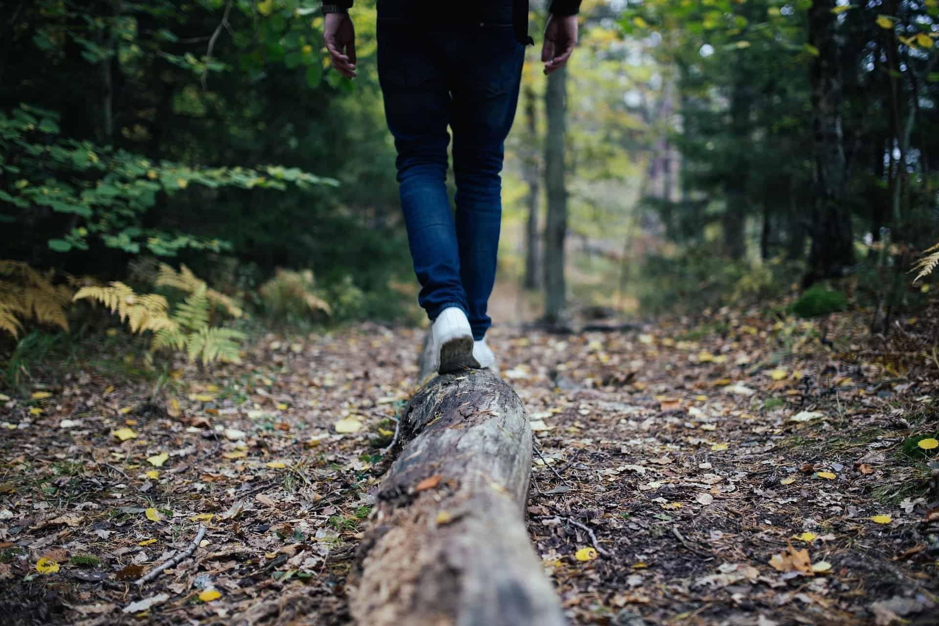 Lymfpromenader med Digitlahälsan