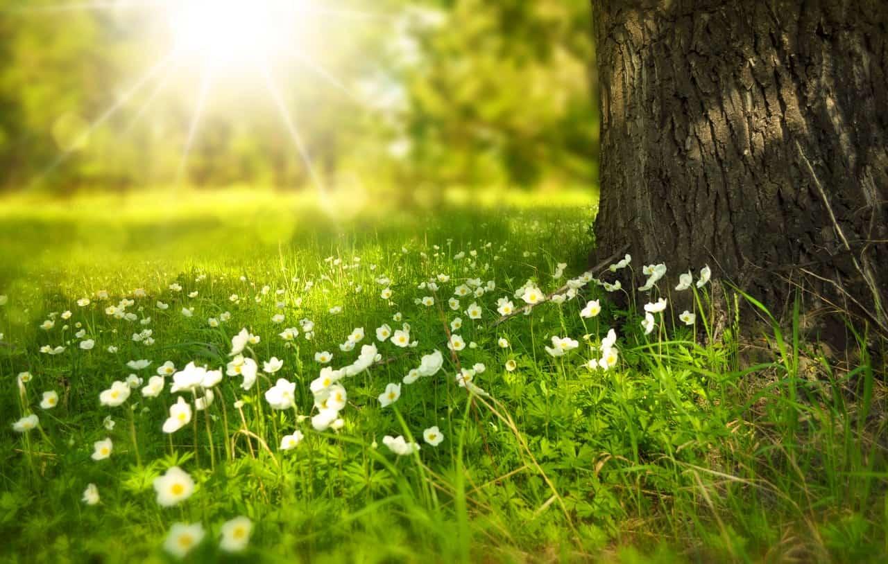 Undvik allvarliga konsekvenser vid D vitaminbrist